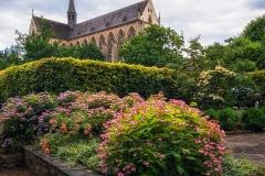 Altenberger Dom mit Blumenbeet - Odenthal