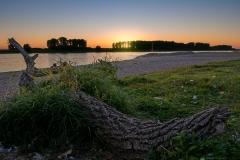 Sonnenuntergang in Hitdorf - Leverkusen