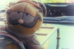 Garfield Maskottchen