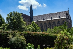 Altenberger Dom im Sommer - Odenthal