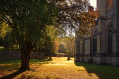 Herbst am Altenberger Dom - Odenthal
