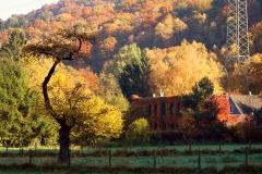 Obenrüdener Kotten im Herbst - Solingen