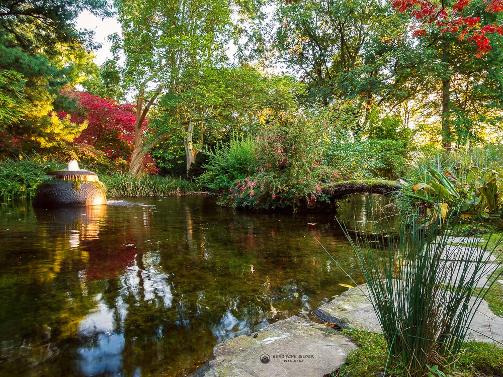 Teich im japanischen Garten