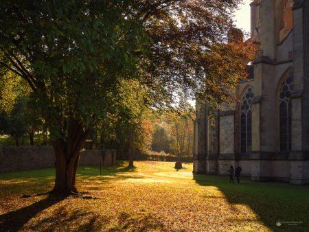 Altenberger Dom Teilansicht Herbst