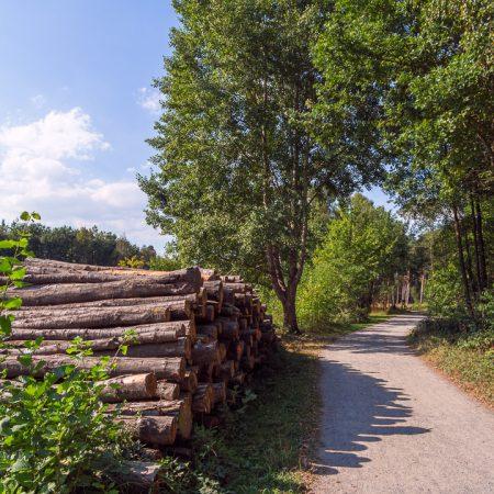 Ohligser Heide Wanderweg