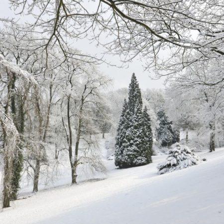 Barmer Anlagen im Winter