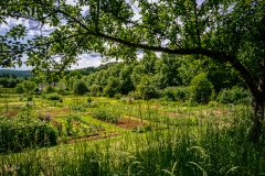 Alter Garten im Freilichtmuseum - Lindlar