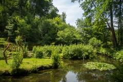 Teich im Sinneswald