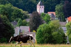 Blick auf Odenthal