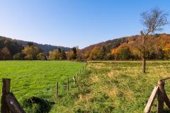 Obenrüdener Herbstwiese - Solingen