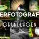 Tierfotografie Grundlagen