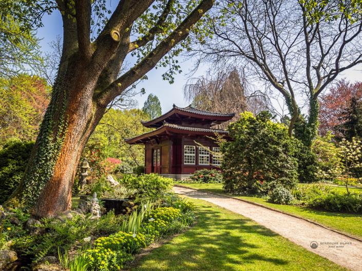 Japanischer Garten - Teehaus