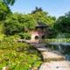 Japanischer Garten Leverkusen - Sommerteich