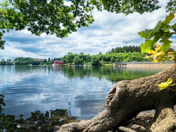 Brucher Talsperre - Uferblick