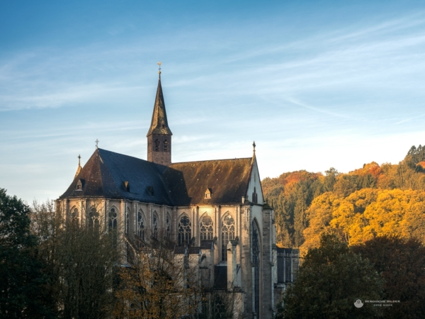 Altenberger Dom am Herbstmorgen