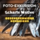 Foto-Exkursion Scharfe Motive